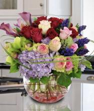 Your Highness Arrangement