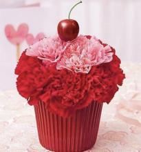 Red and Pink Cupcake