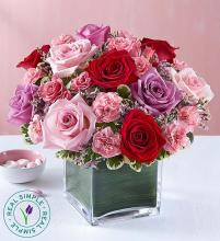 Forever Yours Rose Medley