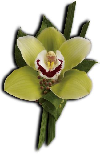 Green Orchid Boutonniere